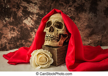 Still life with a human skull with a fake white rose on a...