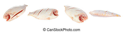 Nile or red tilapia, Oreochromis niloticus, isolated on...
