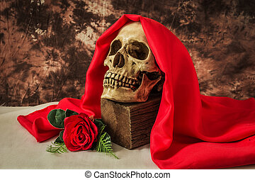 Still life with human skull with red rose on white cloth...