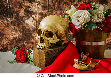 Still life with human skull with red rose and white rose on...