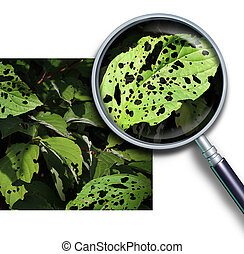 Plant Disease - Plant disease concept as a group of damaged...
