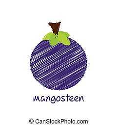 mangosteen fruit design - mangosteen fruit, pencil sketch...