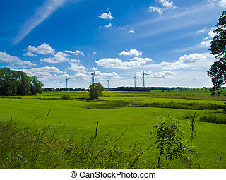 wind farm in agrarian landscape with meadows