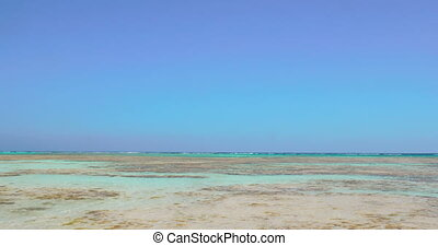 Nature scene with sea shore and clear blue sky