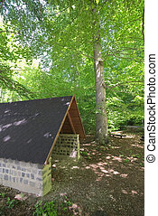 Hikers Refuge In A Beech Forest - Hikers refuge in a beech...