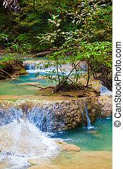 Deep forest waterfall.  - Deep forest waterfall
