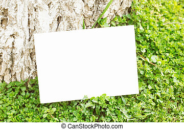 Blank paper on green grass. - Blank paper on green grass...