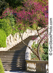 Nimes - A stairway in the old city park