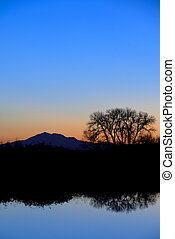 Riparian Reflection in Evening Blue - Reflected Riparian...