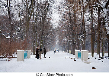 Lazienki Park in winter Poland, Warsaw