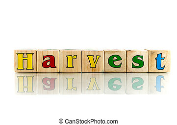 harvest colorful wooden word block on the white background