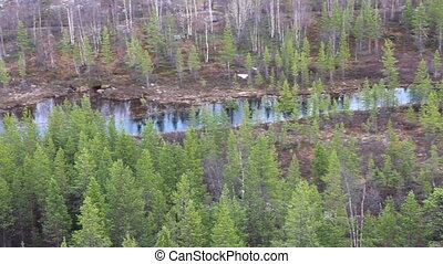 Valley taiga river - Panorama of a mountain river. Top view