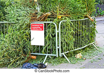 Christmas tree composting - Collection site for composting...