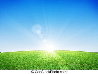Endless green grass field and deep blue sky