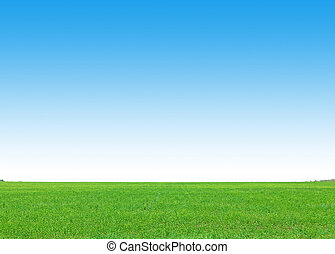 Green grass field and clear blue sky background