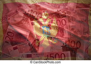colorful waving montenegrin flag on a euro money background