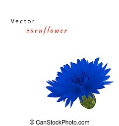 Template card with cornflower - Template card for greeting...