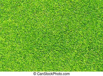 grass - Beautiful green grass texture