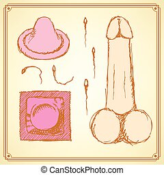 Sketch condoms and penis in vintage style, vector
