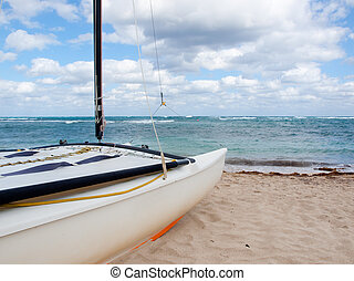 Hobie Cat on the Beach - Small catamaran on a Caribbean...