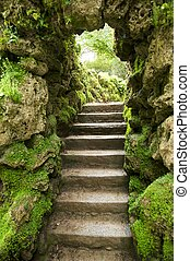stone stairs at nature - small stone stairs at a green...