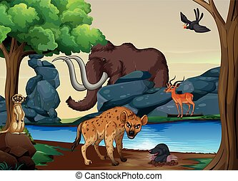 Wildlife - Poster of wild animals at the river bank