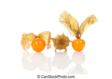 Physalis isolated on white background. - Physalis, ground...