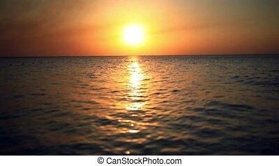 schöne, fliegen, landschaftlich, Sonnenuntergang, meer,...