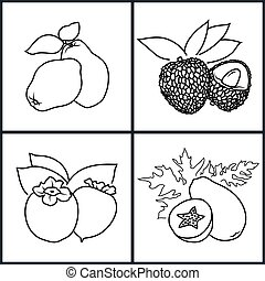 Persimmon, Papaya, Quince, Lichee - Set of Fruit Icons ,Icon...