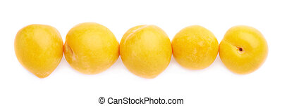 Lined up yellow plums isolated - Yellow mirabelle plums...
