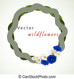 Vector white background with chamomile and cornflowers -...