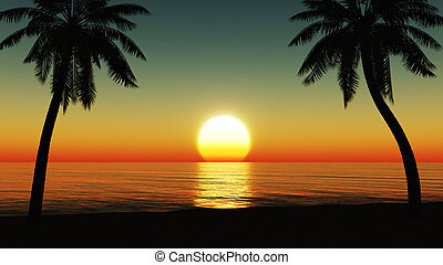 Sunset at the tropical beach with coconut palm trees silhouette