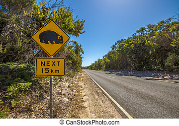Wombat road sign - Warning sign for wombat crossing on...