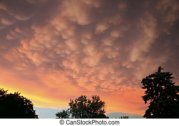 Mammatus Clouds - Mammatus clouds at the edge of a strong...