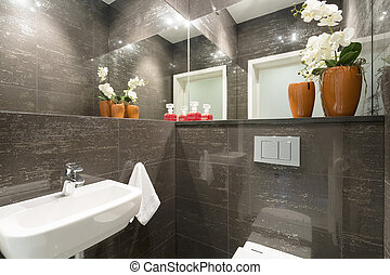 Lavatory in modern house