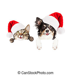 Happy Christmas Dog and Cat Over White Banner