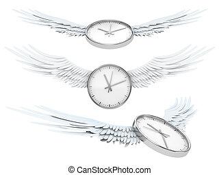 voando, bonito, tempo