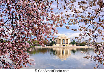 DC in Spring - Washington, DC at the Tidal Basin and...