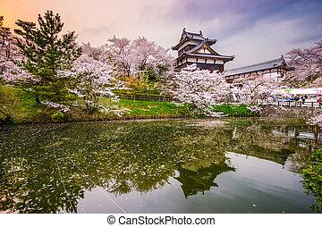 castillo, en, Nara, japón,
