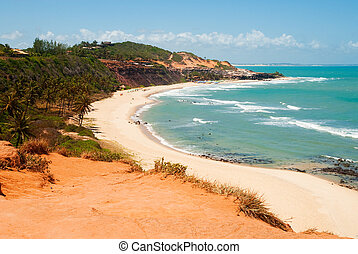 Beautiful beach with palm trees at Praia do Amor Brazil -...
