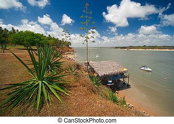 coast of Tibau do Sul near pipa brazil - Tropical coast of...