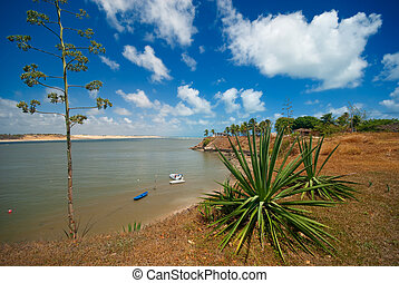 coast of Tibau do Sul near pipa brazil - Tropical coast of...