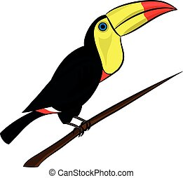 illustration of a cute colorful toucan sitting on a tree branch