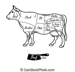 American cuts of beef. Vintage typographic hand-drawn...