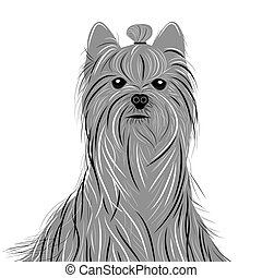 Dog yorkshire terrier vector portrait of a Domestic Dog. Cute animal head.