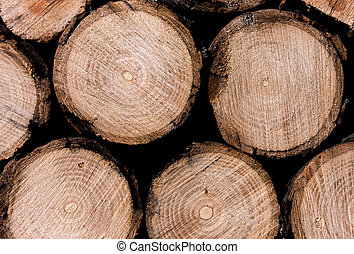 Stack of sawn wood - Stack of rough chopped logs closeup