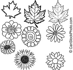 hand drawn doodles of flower and leaf - illustration vector...