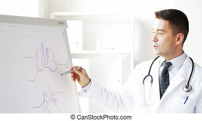 happy doctor showing medical drawing on flip board -...