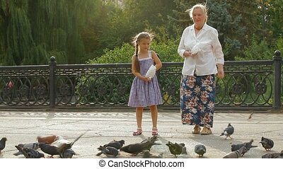 Dove Flock - Granddaughter and grandmother feeding a flock...