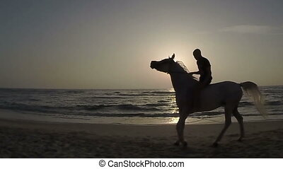 Rider on horseback at sunset and th - Slow motion. Horse...
